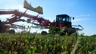 ostatnia jesień czyli podsumowanie   orka uprawa siew kukurydza 2015