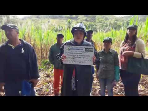 vídeo Nascente de água é recuperada em Poté, MG