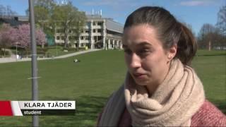 Skenande priser på små lägenheter slår hårt mot studenter - Nyheterna (TV4)