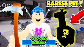 I Spent 70,000 ROBUX To Unlock THE RAREST PET In PET MINING SIMULATOR!! (Roblox)