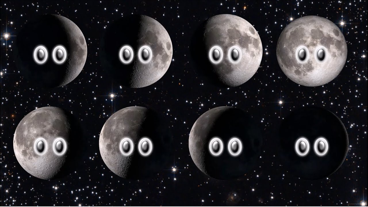 Phases Of The Moon In Order For Kids