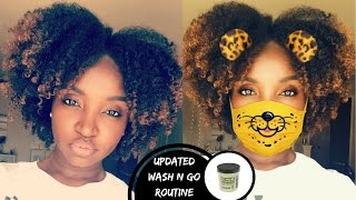Updated Wash N Go Routine | Type 4 Hair | Eco Style Black Castor And Flaxseed Oil