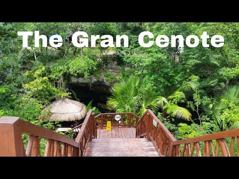 Nomadic Travel - The Incredible Gran Cenote in Tulum Mexico