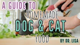 PART 1: Homemade dog & cat food | Veterinarian Dr. Lisa answers (2019)