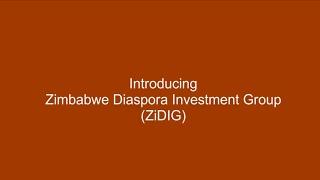 Zimbabwe Diaspora Investment Group