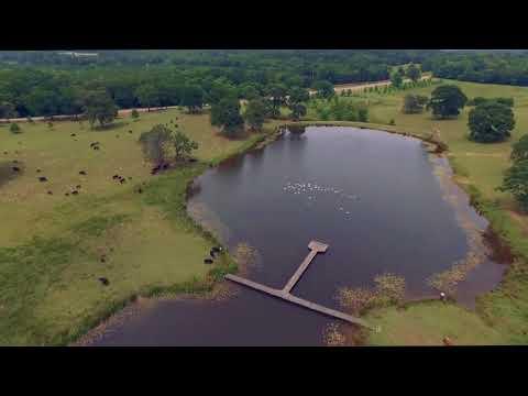 Five Creeks Ranch