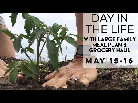Day in the Life of a SAHM | Planting the Garden | Large Family Menu and Grocery Haul