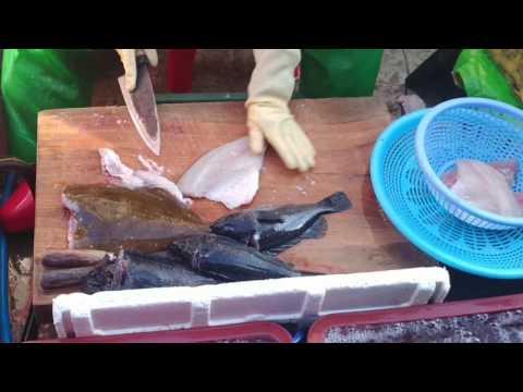 전문가 회뜨기달인  (making sushi with fish)