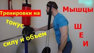Как накачать ШЕЮ! Тренировка на силу и объем(Мой сайт http://dmitriyglebov.com/ Индивидуальные программы http://dmitriyglebov.com/individualno/ Страница в Facebook ..., 2015-04-17T15:43:54.000Z)