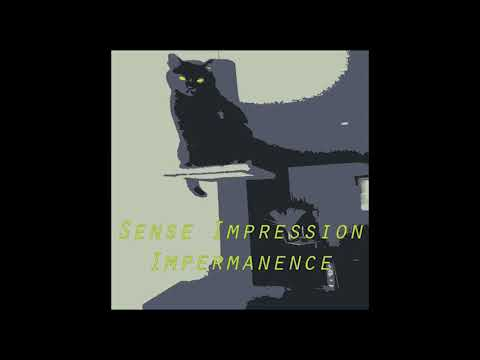 Sense Impression - Impermanence LP