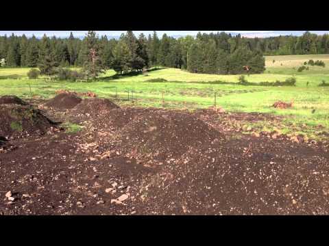 Aquarius Farms Introduction