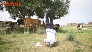 【Aha视频】农村老人田间集体练瑜伽,老龄化村的瑜伽实验 ---- 瑜伽会是解决空巢问题的途径吗?