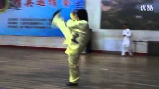 Video Li Yujie (李雨洁), SongShi Xingyi (宋氏形意), Wu Xing Lian Huan Quan  (五行连环拳) download MP3, 3GP, MP4, WEBM, AVI, FLV November 2017