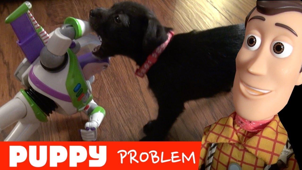Toy Story 4: Puppy Problems!  Woody Buzz Lightyear Slinky Dog | Disney Pixar