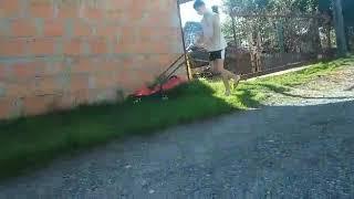 Zakup nowego sprzętu ogrodniczego