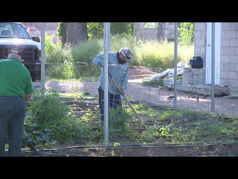 PSA Canseco House Horticulture Project