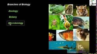 Branches of Biology