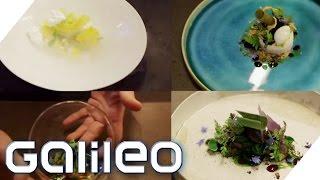 Der Gemüse-Patissier | Galileo Lunch Break