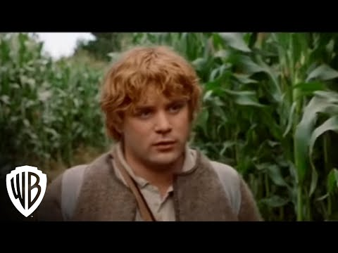 Lord of the Rings:Fellowship of the Rings - Pippin