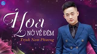 Hoa Nở Về Đêm - Trịnh Nam Phương [Audio Official]