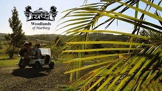 JOB in Australien | Arbeiten bei den Woodlands of Marburg
