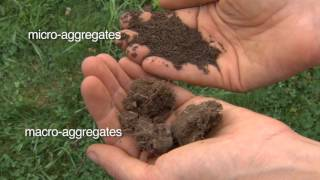 Soil Health: Physical Properties of Soil