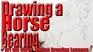 Drawing a horse Rearing Step by Step Instructions