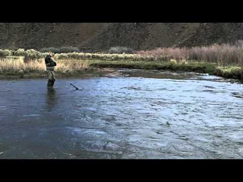 Western Trout Wrangler:  Fly Fishing the East Walker