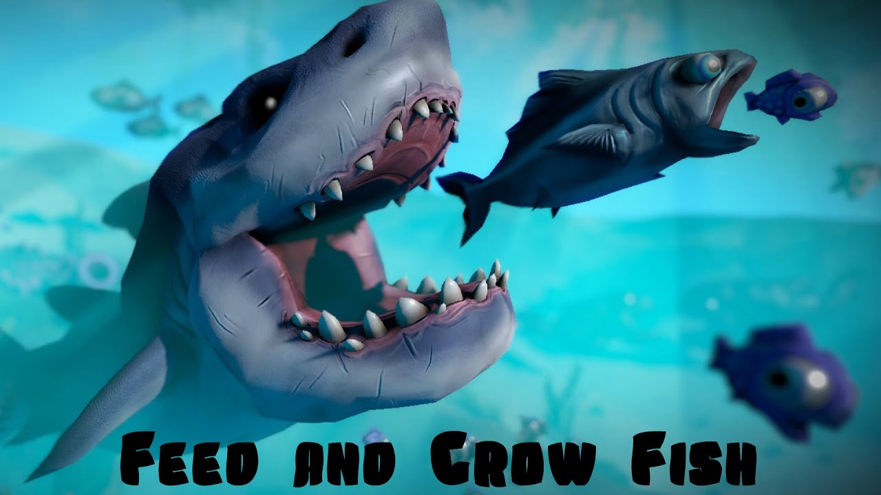 Feed and grow fish youtube for Feed and grow fish