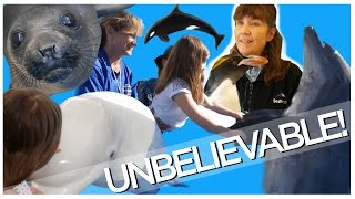 WHAT HAPPENS BEHIND THE SCENES AT SEA WORLD