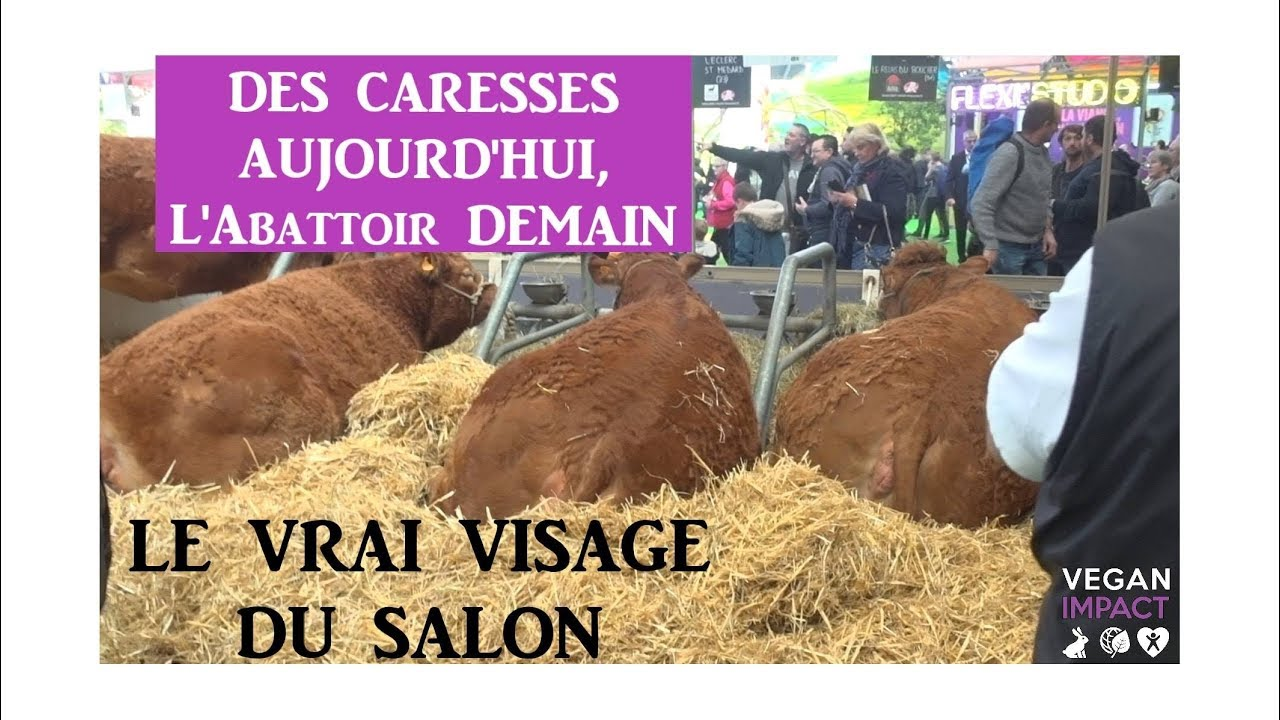 Vegan impact au salon de l 39 agriculture 2019 youtube - Acces salon de l agriculture ...