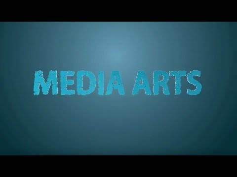 BCDF - Media Arts ( Real Time Expression 2016 )