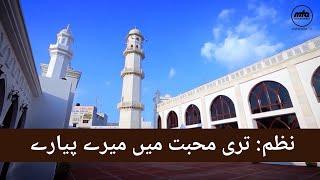 Nazm | Teri Mohabbat Mein