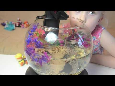 Аквариум tetra cascade globe, украшения, песок, ракушки и рыбка для аквариума. Делаем сами.