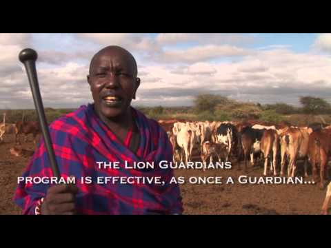 Lion Guardians - Swahili audio with English Subtitles