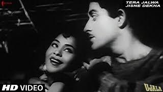 Video Tera Jalwa Jisne Dekha | Lata Mangeshkar | Ujala | Raaj Kumar | Shankar Jaikishan download MP3, 3GP, MP4, WEBM, AVI, FLV April 2018
