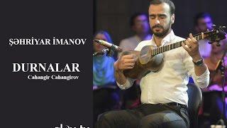 Şəhriyar İmanova - Durnalar