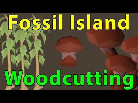 Oldschool Runescape 2007: Fossil Island Woodcutting | Full Sulliuscep Mushroom Run 60k-75k Exp Hour