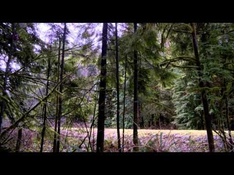 Halálos Célpont [ TELJES FILM - HUN ] letöltés