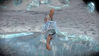 Path of Exile: Ice Shield Skin
