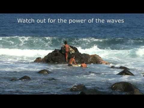 San Diego to Hawaii Dream Vacation sailing Travel America Series