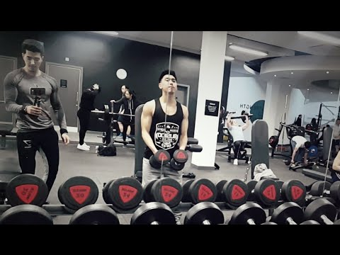 Shoulder & triceps workout at Puregym NEWCASTLE