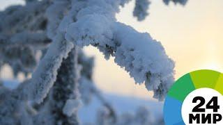 Горячий чай, открытые парковки: казахстанцам помогают пережить арктические морозы - МИР 24