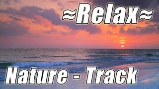 NATURE SOUNDS #1 OCEAN SUNSETS for Studying Most Relaxing Ocean Sounds FloridaBeach Resort