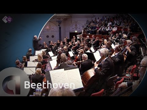Beethoven: Symphony No. 9 - The Radio Philharmonic Orchestra and Markus Stenz - Live Concert HD