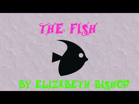 The Fish By Elizabeth Bishop Summary