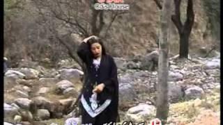 Amin Ulfat (Hazir Gul new tapay 03
