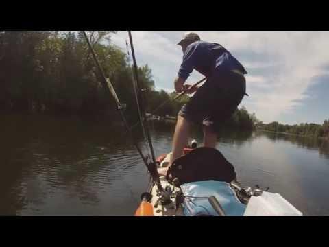 Otonabee River Kayak Musky