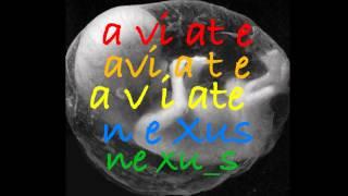 Nexus - Aviate Disc 1