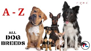 ALL DOG BREEDS IN THE WORLD ( A  Z ) with images 'Types Of Dogs'